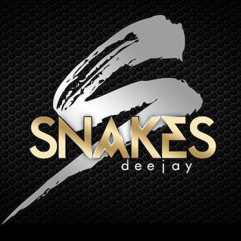 Dj Snakes