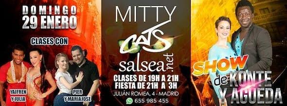 Domingo 29/01 Mitty Cats