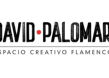 Espacio Creativo Flamenco David Palomar
