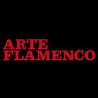 Academia Arte Flamenco