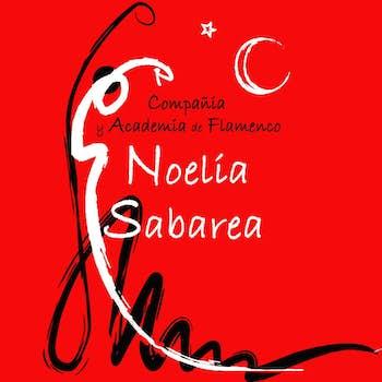 Academia Noelia Sabarea